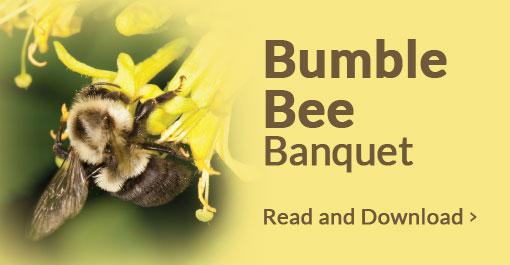 Bumble Bee Banquet