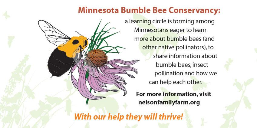 bumble-bee-conservancy-banner
