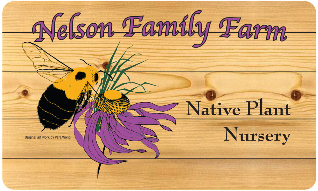 Nelson Family Farm - Artwork