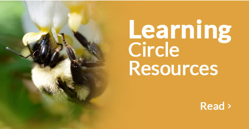 Learning Circle Resources